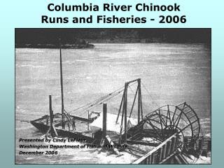columbia river chinook runs and fisheries - 2006