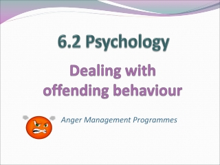 group treatment programme for anger and violence: description and evaluation
