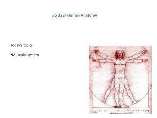 Bio 322- Human Anatomy