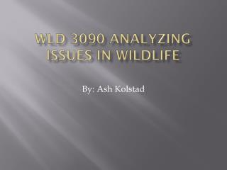 WLD 3090 Analyzing issues in wildlife