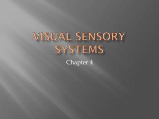 Visual Sensory Systems