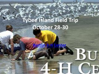 Tybee Island Field  Trip October 28-30