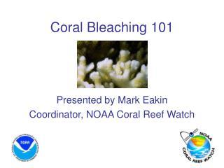 coral bleaching 101
