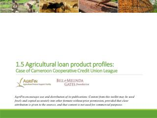 1.5 Agricultural loan product  profiles:  Case  of  Cameroon Cooperative Credit Union League
