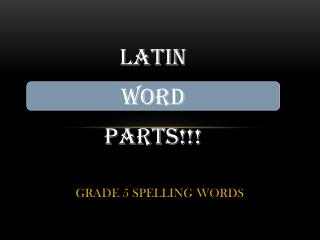 GRADE 5 SPELLING WORDS