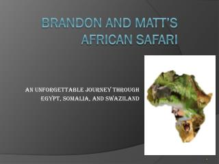 Brandon and Matt's African Safari