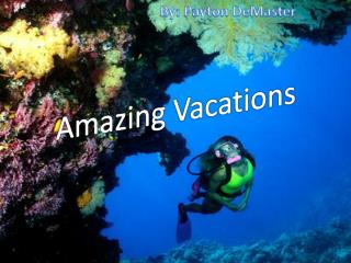 Amazing Vacations