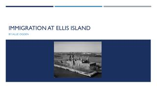 Immigration at Ellis island