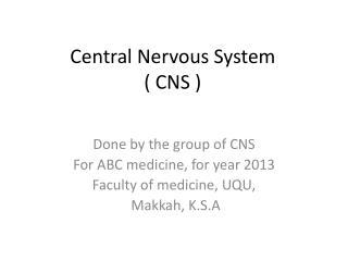 Central Nervous System  ( CNS )
