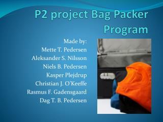 P2 project Bag Packer Program