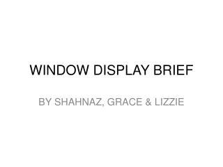 WINDOW DISPLAY BRIEF