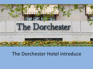 The Dorchester Hotel introduce