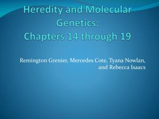 Heredity and Molecular Genetics:  Chapters 14 through 19