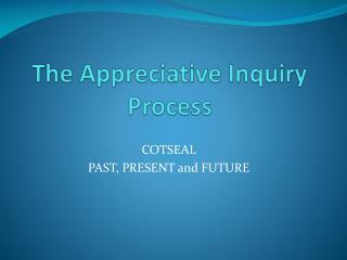 the appreciative inquiry  process