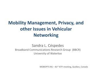 Mobility Management, Privacy, and other Issues in Vehicular Networking