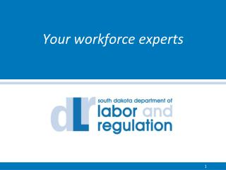 Your workforce  e xperts