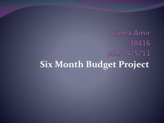 Yumna Amir  38416  pd.5  4/5/11