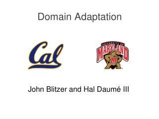 Domain Adaptation
