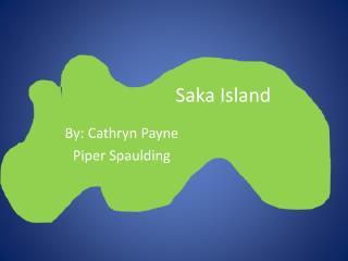 Saka  Island