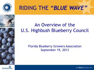 An Overview of the  U.S. Highbush Blueberry  Council Florida Blueberry Growers Association September 19,  2013