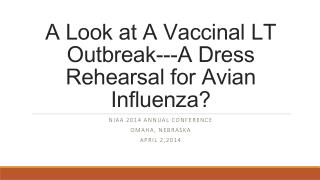 A Look at A  Vaccinal  LT Outbreak---A Dress Rehearsal for Avian Influenza?