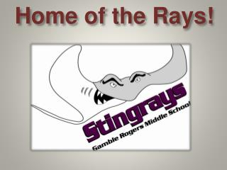 H ome of the Rays!