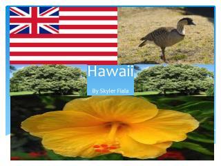 H awaii