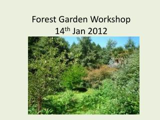 Forest Garden Workshop 14 th  Jan 2012