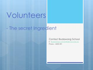 Volunteers   - The secret Ingredient