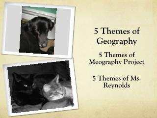 5 Themes of  G eography