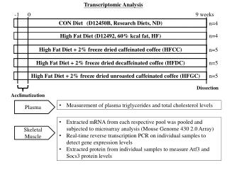 High  Fat Diet + 2% freeze dried  unroasted caffeinated  coffee ( HFGC )