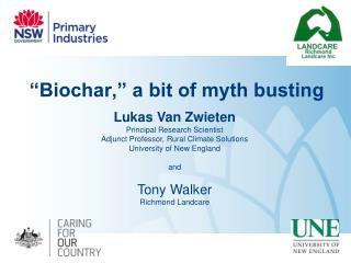 """""""Biochar,"""" a bit of myth busting"""