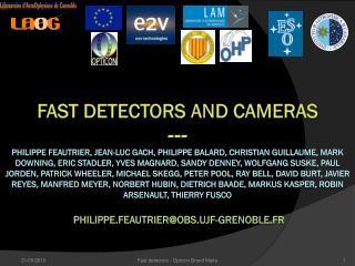 Fast  detectors FP6