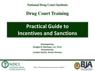 Practical Guide to  Incentives and Sanctions