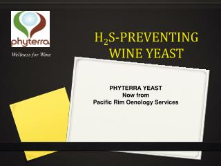 H 2 S-Preventing Wine Yeast