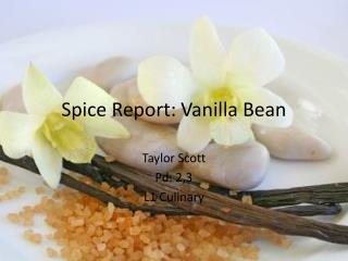 Spice Report: Vanilla Bean