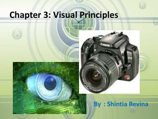 Chapter 3: Visual Principles