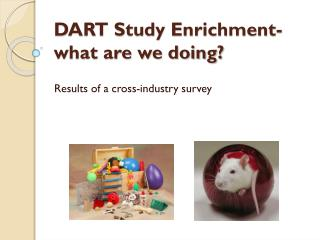 DART Study Enrichment-what are we doing?