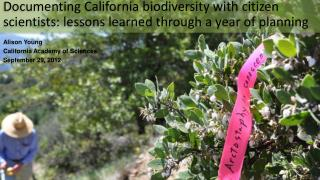 Documenting California biodiversity with citizen scientists: lessons learned through a year of planning