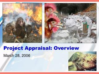project appraisal: overview
