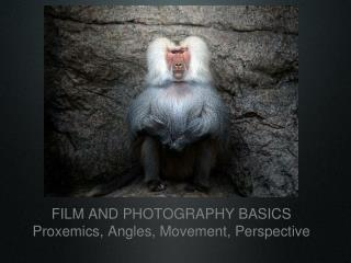 FILM AND PHOTOGRAPHY BASICS Proxemics, Angles, Movement, Perspective