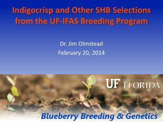 Indigocrisp  and Other SHB Selections from the UF-IFAS Breeding Program