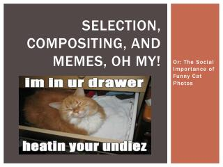 Selection, Compositing, and Memes, Oh MY!