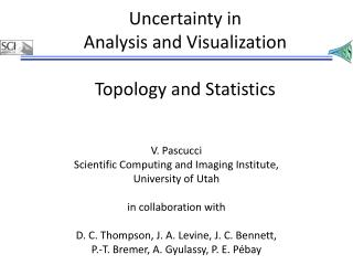 Uncertainty in  Analysis and Visualization Topology and Statistics