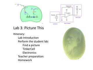 Lab 3: Picture This Itinerary: Lab Introduction Perform the student lab: Find a picture TinkerCell Electronics Teacher
