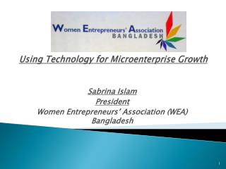 Using Technology for Microenterprise Growth