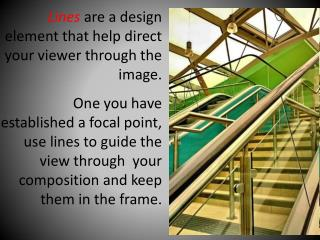 Lines  are a design element that help direct your viewer through the image.