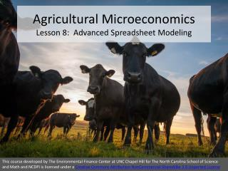 Agricultural Microeconomics Lesson 8:  Advanced Spreadsheet Modeling