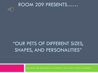 """Room 209 presents…… """"Our pets of different sizes, shapes, and personalities"""""""