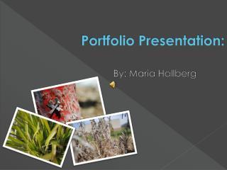 Portfolio Presentation: